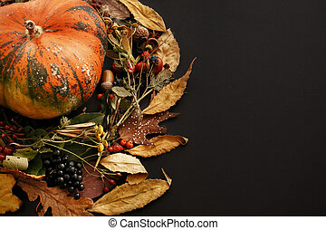 Pumpkin in autumn leaves wreath, berries, nuts, acorns, flowers, herbs on dark background, isolated. Seasons greetings. Space for text. Happy Thanksgiving concept