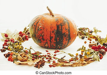 Pumpkin in autumn leaves wreath, berries, nuts, acorns, flowers, herbs on white background, isolated. Seasons greetings. Space for text. Happy Thanksgiving concept.