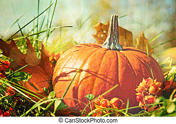 Pumpkin in the grass with vintage color feeling - Small...