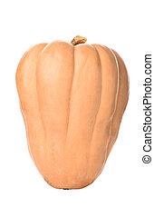 Pumpkin isolated on a white background. Copy space