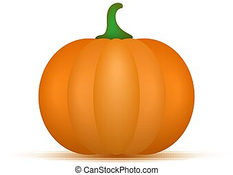 Pumpkin isolated on white background. Vector