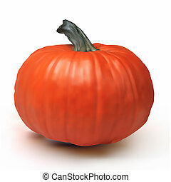 Pumpkin Isolated on White. EPS 8
