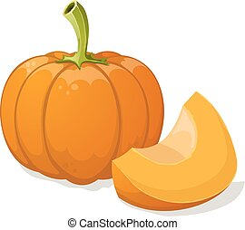Pumpkin isolated on white. Vector illustration