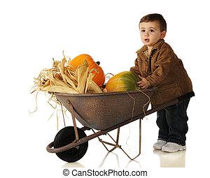 Pumpkin, Mine