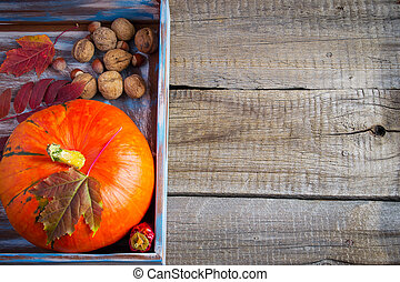Pumpkin, nuts and autumn leaves on the old boards. with space fo