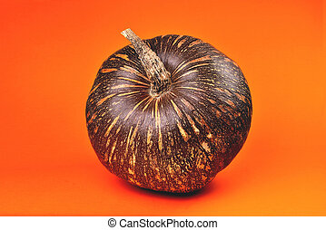 pumpkin of brown color with yellow stripes in a round shape on an orange background