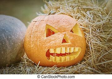 Pumpkin on a Hay