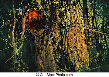 pumpkin on a head