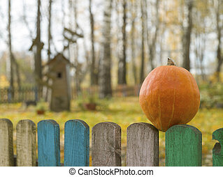 Pumpkin on a wooden fence against the background of a windmill