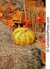 Pumpkin on straw as autumn decoration at market place