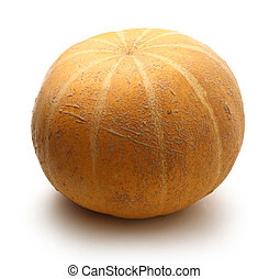 Pumpkin on the white background