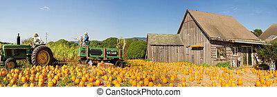Pumpkin Patch Farm House with Halloween Decoration - Pumpkin...