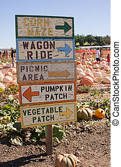 Pumpkin patch and sign