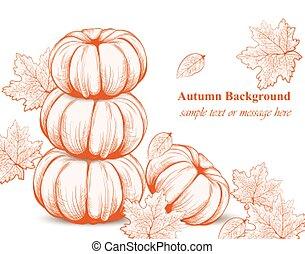 Pumpkin pattern background. Vector Line art hand drawn graphic style illustrations