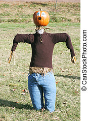 Pumpkin person