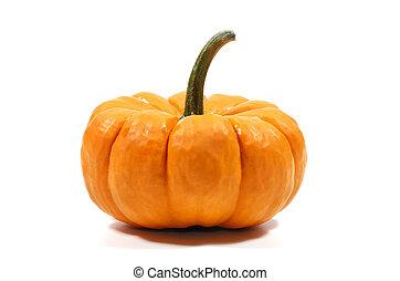 Pumpkin - Photo of a Pumpkin - Autumn Season / Halloween