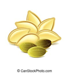 Pumpkin seeds isolated on white vector - Pumpkin seeds...