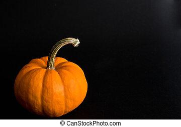 pumpkin studio shot on black backgr
