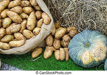 Pumpkin, sweet potato composition