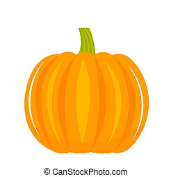 Pumpkin isolated - vector illustration