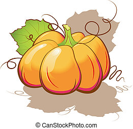 Pumpkin - Vector pumpkin. Isolated on white. EPS 8, AI