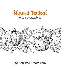 Pumpkin vector seamless pattern. Hand drawn vintage border. Harvest festival illustration.