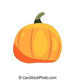 pumpkin vegetable on white background