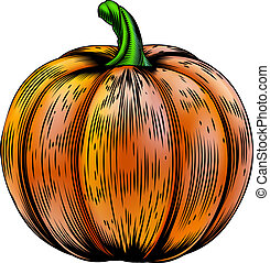 Pumpkin vintage woodcut illustratio