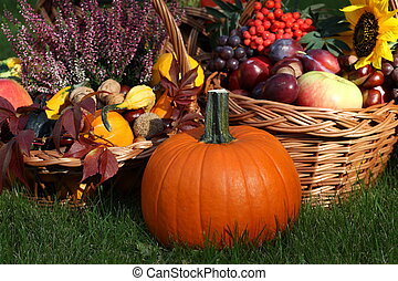 Pumpkin with autumn goodies