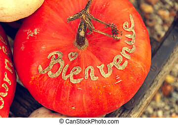 Pumpkin with french sign Bienvenue, top view, toned image,...