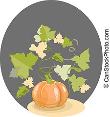 Pumpkin with leaves on a black background