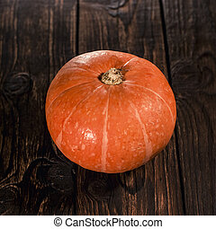 pumpkin with shallow depth of field