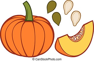pumpkin with slice and seeds vector