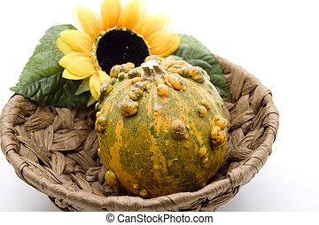 Pumpkin with sunflower