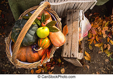 Pumpkins and apples. Autumn homemade ingredients for Thanksgiving cooking.
