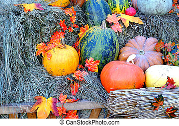 Pumpkins and autumn leaves in hay