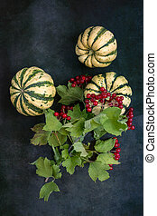 Pumpkins and berries of ripe red viburnum on a dark background