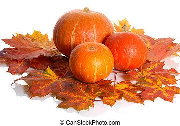 pumpkins and leaves - pumpkins on background of colorful...