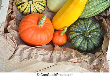 Pumpkins and squashes in the box