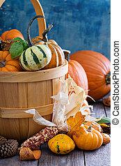 Pumpkins and variety of squash