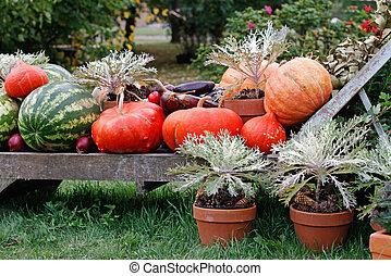 Pumpkins and watermelons lie on a wooden deckchair as decoration at market