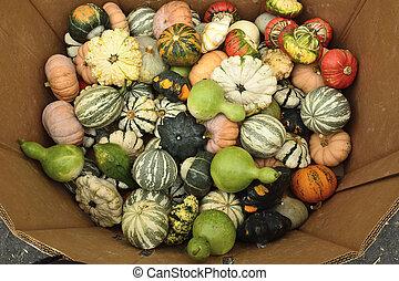 Pumpkins at Halloween market