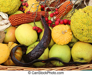 pumpkins carob panicles and apples in a greengrocer -...