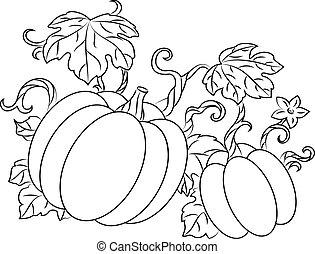 pumpkins, høst