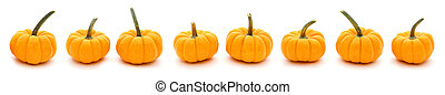 Pumpkins in a row - Autumn border of pumpkins in a row with...