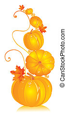 Pumpkins in different kinds with autumn leaves of a maple