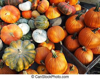 Pumpkins In Wooden Crates