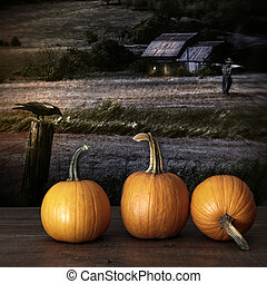 Pumpkins left on table at nightime
