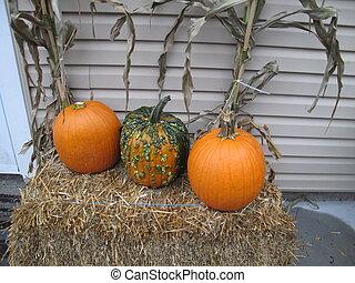 Pumpkins on bale of hale