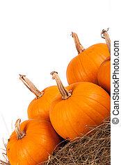 Pumpkins on hay